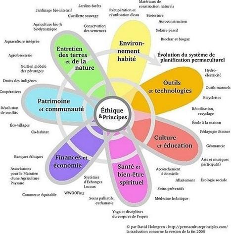 La permaculture : la complexité décomplexée | Shabba's news | Scoop.it