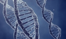 Future of human gene editing to be decided at landmark summit | leapmind | Scoop.it