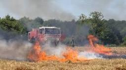 Algérie: Lancement d'une campagne nationale de sensibilisation sur les incendies de récoltes