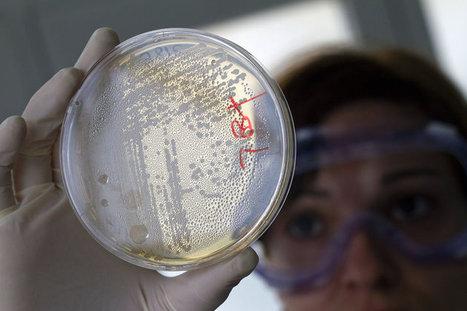 Allemagne : Bactérie : plusieurs pistes à l'étude   Europe1.fr   Toxique, soyons vigilant !   Scoop.it