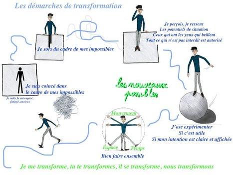 Organisation agile : retour d'expérience   Management de demain   Scoop.it