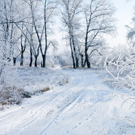 Winter's Tale by David Essex   English Listening Lessons   Scoop.it