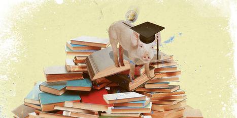 Programme Erasmus, quel bilan après trente ans d'existence? | Enseignement Supérieur et Recherche en France | Scoop.it