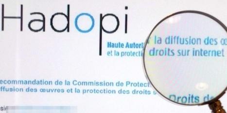 Hadopi veut frapper au portefeuille les sites pirates | Edition - Musique - Cinéma - Jeu Vidéo | Scoop.it