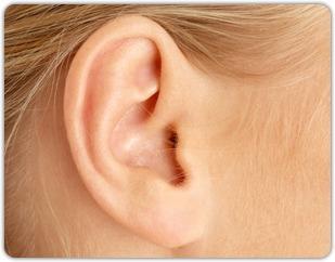 Santé : les sourds retrouveront bientôt l'ouïe grâce aux cellules ... - Menly.fr | Pour les sourds, et les autres... | Scoop.it