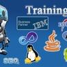 IT Training Institute