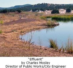 Sedona Wetlands Preserve Recognized | Sedona.biz (Sedona, AZ) | CALS in the News | Scoop.it