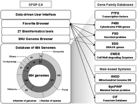 Nucleic Acids Research: CFGP 2.0: a versatile web-based platform for supporting comparative and evolutionary genomics of fungi and Oomycetes (2012) | Plant Pathogenomics | Scoop.it