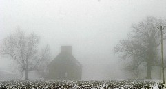 Out of the FOG - What is FOG | ISO Mental Health & Wellness | Scoop.it