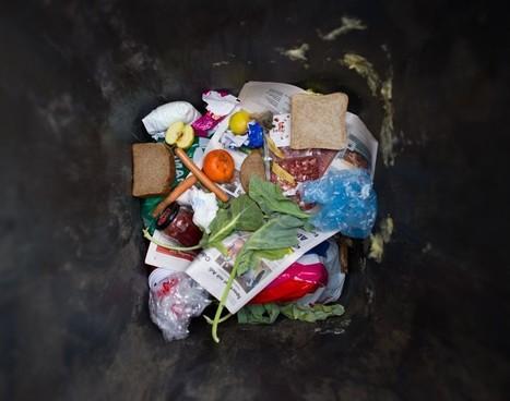Presque la moitié de la nourriture mondiale serait gaspillée | géographie, histoire, sciences sociales, développement durable | Scoop.it