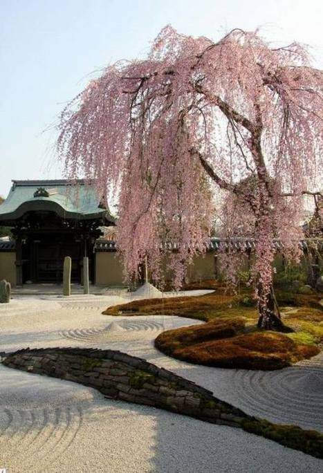 15 Amazing Japanese garden designs for a perfect harmony | Japanese Gardens | Scoop.it