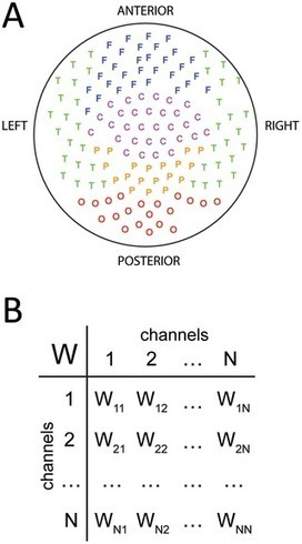 A Model of Functional Brain Connectivity and Background Noise as a Biomarker for Cognitive Phenotypes: Application to Autism | Neuroscience_topics | Scoop.it