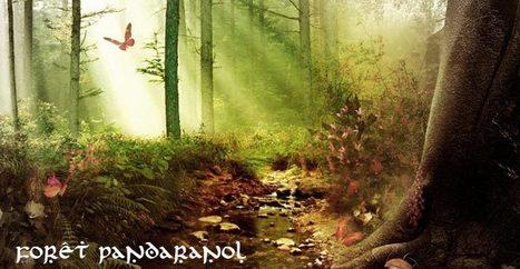 Pandaranol | Un Pandaranol vaut 7 amazones | Pandaranol | Scoop.it