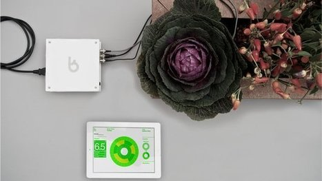 The technology that's transforming gardening   A Clean, Green Home   Scoop.it