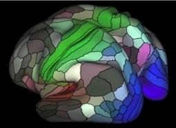 CONNECTOME. : Toujours plus profond dans les entrailles de notre cerveau – Nature | Scientific Innovations in Biology | Scoop.it