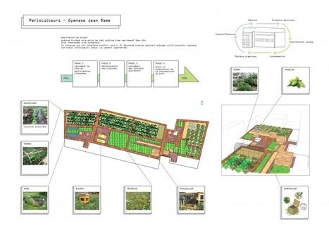 Une Micro ferme participative sur le toit du Gymnase Jean Damme ← Toits Vivants | Agriculture urbaine, architecture et urbanisme durable | Scoop.it
