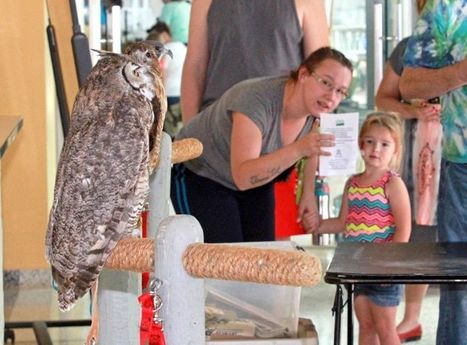 Maricopa Agricultural Center opening for Family Day | CALS in the News | Scoop.it