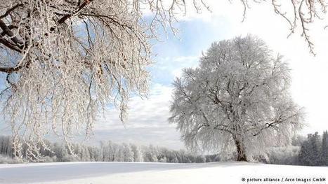 Winter in Deutschland | Deutschkurse | DW.COM | 15.01.2016 | Angelika's German Magazine | Scoop.it