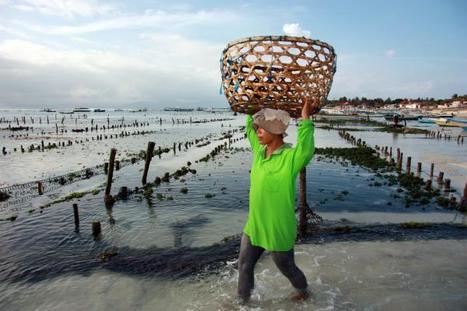Sportventures : Nusa Lembongan | Adventure Travels & Photo Tales | Scoop.it