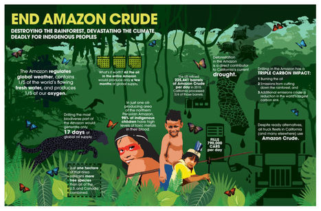 U.S. imports of Amazon crude oil driving expansion of oil operations | Rainforest EXPLORER:  News & Notes | Scoop.it