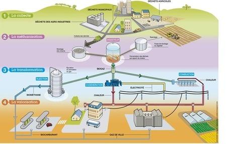 Ça sent le gaz pour la méthanisation en France ? | Les coups de coeur de D'Dline 2020 | Scoop.it