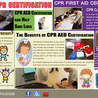 Cheapest CPR Certification