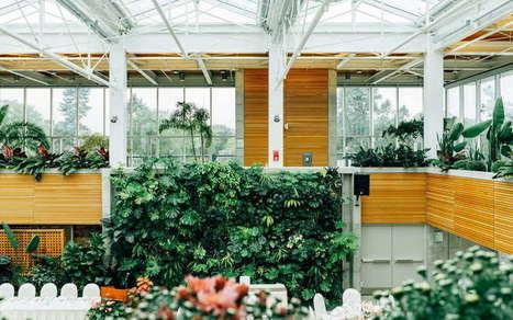 25 Inspirasi Desain Taman Indoor Bergay