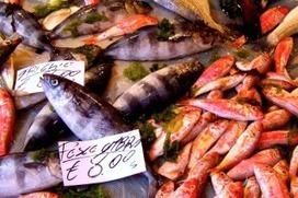 In Italia catalogare i nomi dei pesci è un balletto satanico perché cambiano di regione in regione. Ma ci proviamo | Food & Beverage, Restaurant, News & Trends | Scoop.it