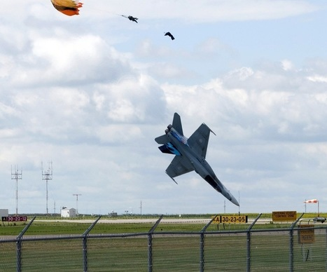 The 65 Most Perfectly Timed Military Photos You'll Ever See   pixels and pictures   Scoop.it