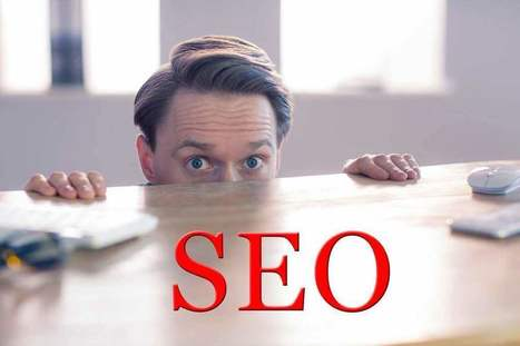 7 things business owners fear (but shouldn't) about SEO | Surviving Social Chaos | Scoop.it