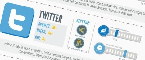 [Infographie] Marketing : quels réseaux sociaux faut-il cibler en 2013 ?|FrenchWeb.fr | Initia3 - Conseils numériques TPE - PME | Scoop.it