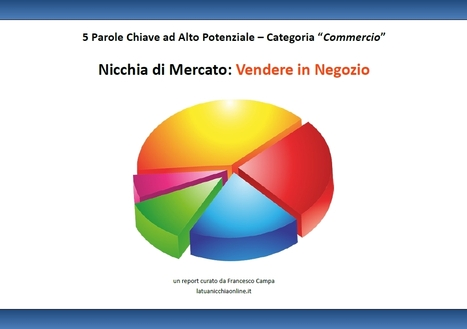 """Analisi Nicchia di Mercato """"Vendere in Negozio"""" nel Settore Commercio   Nicchie Emergenti   Scoop.it"""