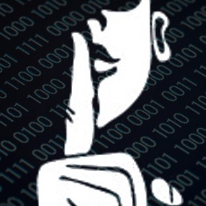 Privacy Tools Raise Red Flag for Intelligence Agencies | digitalcuration | Scoop.it