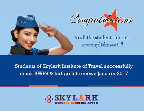 Skylark diploma in aviation travel management |