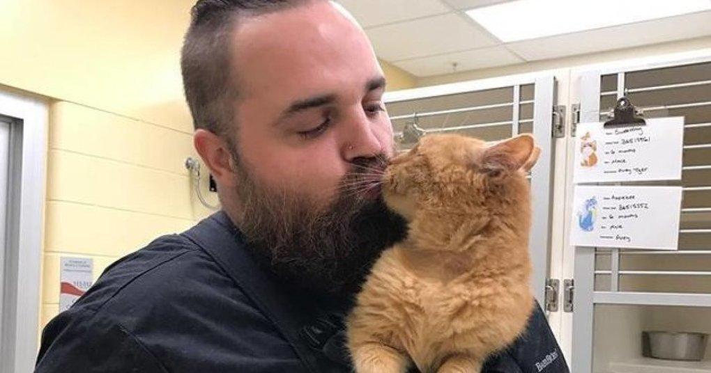 Ce refuge a trouvé la solution idéale pour ce vieux chat qui adore être porté