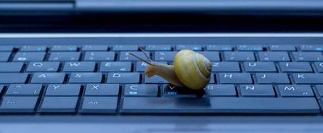 Cinq méthodes pour améliorer la rapidité de son site WordPress   creation de sites web   Scoop.it