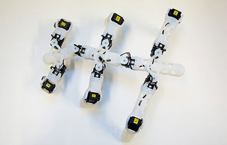 3D Printed Robots Teach Themselves to Move | DigitAG& journal | Scoop.it