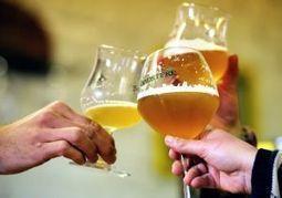 Le goût de la bière, source de dépendance pour notre cerveau   Le Monde de la bière   Scoop.it