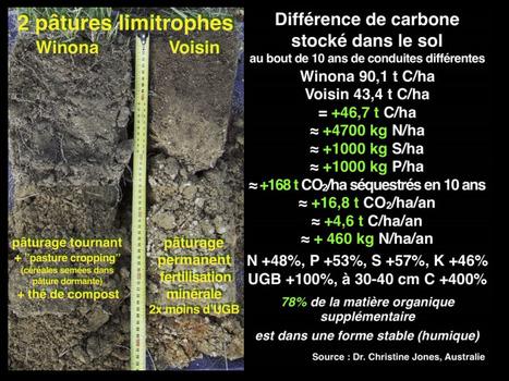 Le carbone est la clef  de la régénération des sols - Le Mystère du Carbone parUlrich Schreier | AC Agriculture de Conservation | Scoop.it