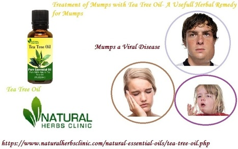 Tea Tree Oil for Mumps a Viral Disease | Natura