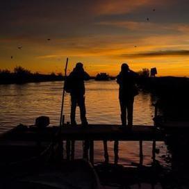 Faut-il interdire la chasse le dimanche? | Sauvegarde et Protection des animaux | Scoop.it