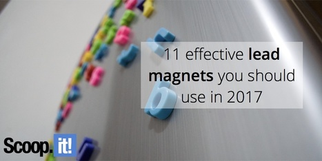 11 effective lead magnets you should use in 2017 | Internet Marketing | Scoop.it