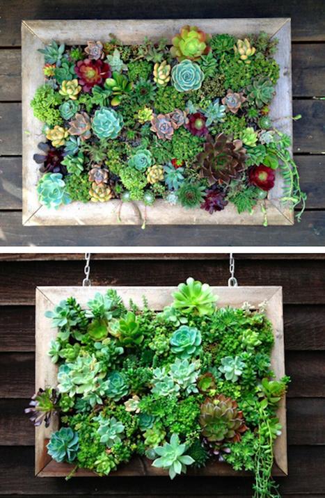 faire pousser des herbes aromatiques en interie. Black Bedroom Furniture Sets. Home Design Ideas
