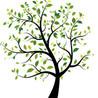 J W Tree Services