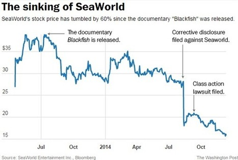 Chart: What the documentary 'Blackfish' has done to SeaWorld | Documentary Landscapes | Scoop.it