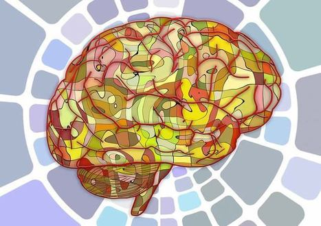 Our Brains Have a Basic Algorithm That Enables Our Intelligence   Edgar Analytics & Complex Systems   Scoop.it