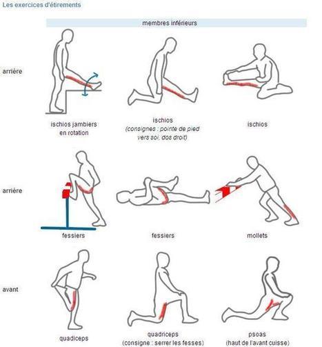 Programme d'étirements musculaires des membres inférieurs   Actu des loisirs de plein air   Scoop.it