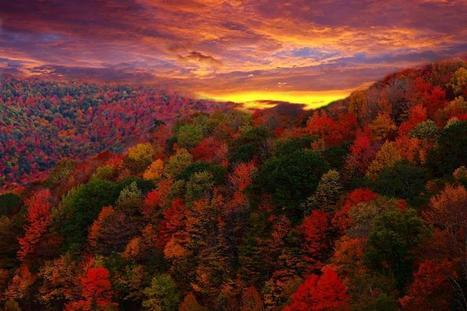 30 Colorful Fall Photos To Get You Excited For The Changing Of Seasons | Interesting Photos | Scoop.it