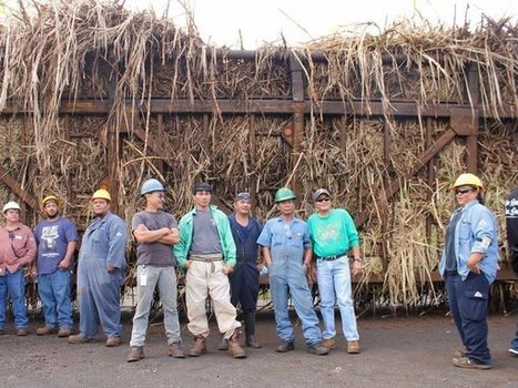 The Final Days Of Hawaiian Sugar | STEM Connections | Scoop.it