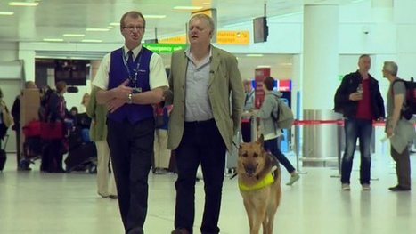Has air travel improved for passengers with a disability? - BBC News | Tourism 4All | Scoop.it